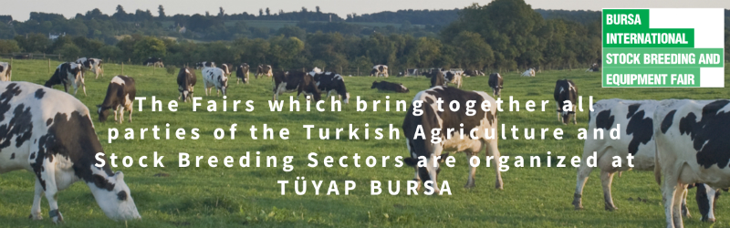 Bursa stock breeding and equipment fair